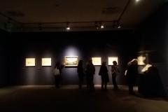 Bellotto-foto-521