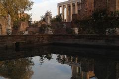 Parco-Archeologico-del-Colosseo-Foro_Romano_casa_vestali_cortile_dettaglio