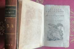 20-Spirito-delle-Leggi-1777-Domenico-Terres_Mantova21